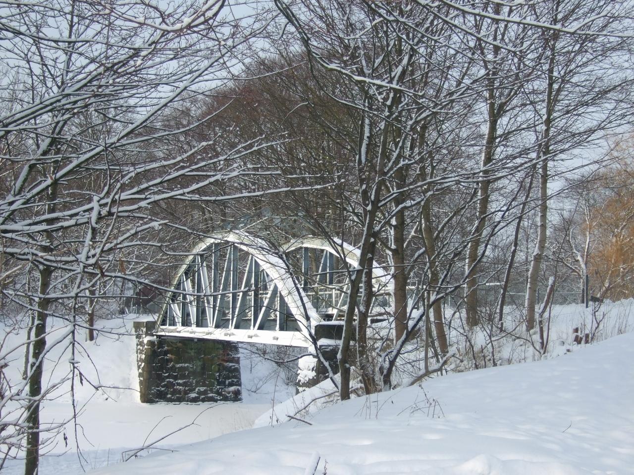 2011-01-05 Vinter 015 (1280x960)